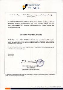Gustavo - 4